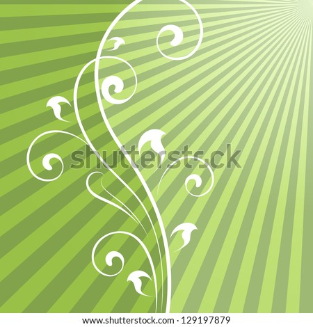 Abstract green rays vector background with vertical floral dividing element. - stock vector
