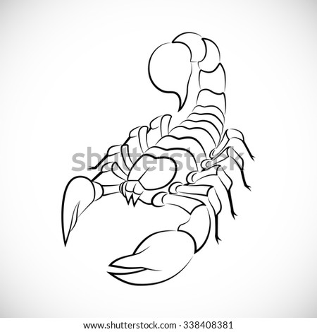 Abstract image of a scorpion vector - stock vector