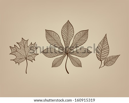 abstract lace autumn leaves isolated on the beige background vector - stock vector