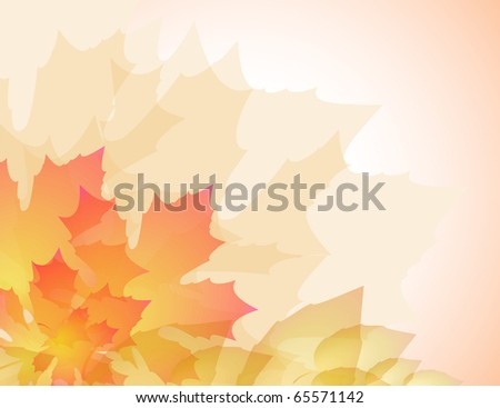 Abstract maple and other leaves background - stock vector