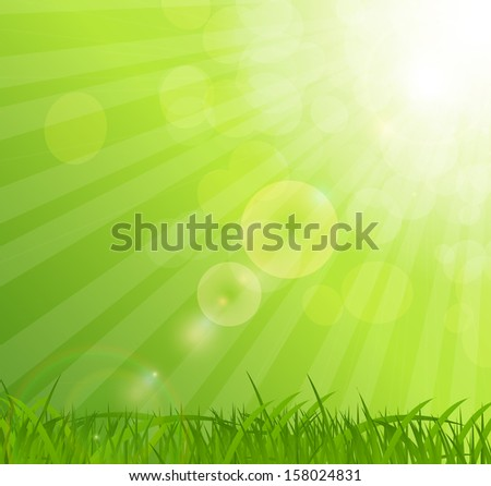 Abstract natural background vector background.