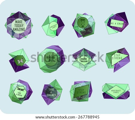 Abstract polygonal label design. Elements of astronomy and constellation. Cosmic style. . low poly illustration - stock vector
