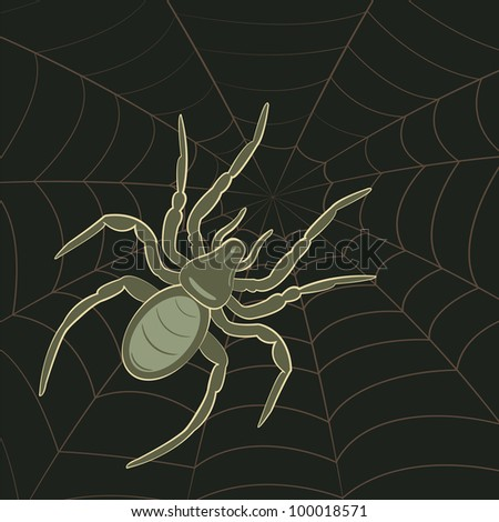 Abstract Spider on Spiderweb, vector illustration. - stock vector