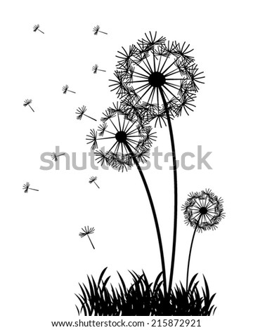 abstract vector dandelions - stock vector
