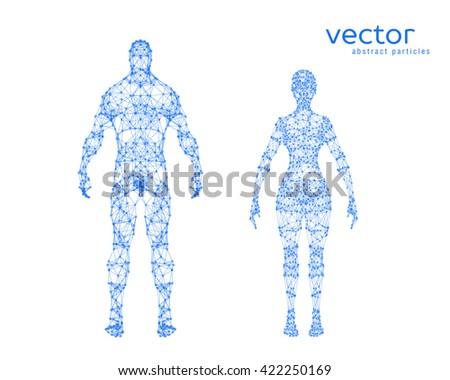 Abstract vector illustration of male and female body on white background.