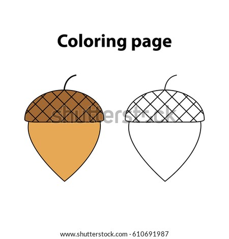 acorn coloring page game for children kids