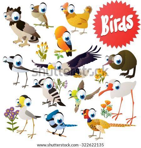 Adorable cartoon comic birds set: harpy, eagle, rock cock, nightingale, kiwi, woodpecker, jay, pheasant, hummingbird, ibis, crane - stock vector