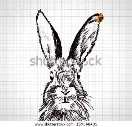 Adorable hand drawn rabbit with vector butterfly illustration - stock vector