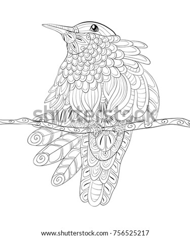 Adult Coloring Pagebook Cute Hummingbird On Stock Vector HD Royalty Free 756525217