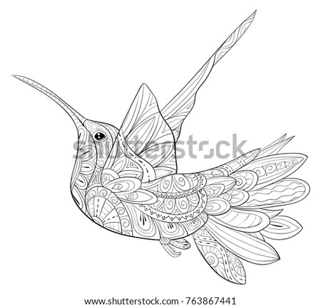 Adult Coloring Pagebook Hummingbird Flying Relaxing Stock