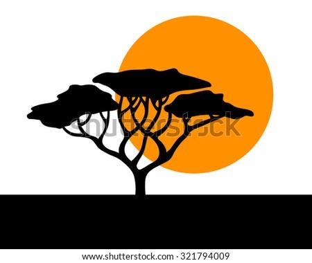 African acacia safari simplistic sunset background - stock vector