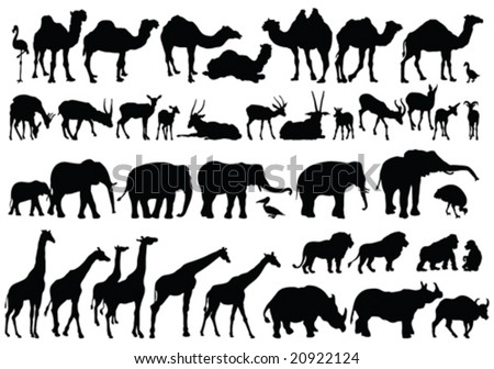 african animals silhouettes - vector - stock vector