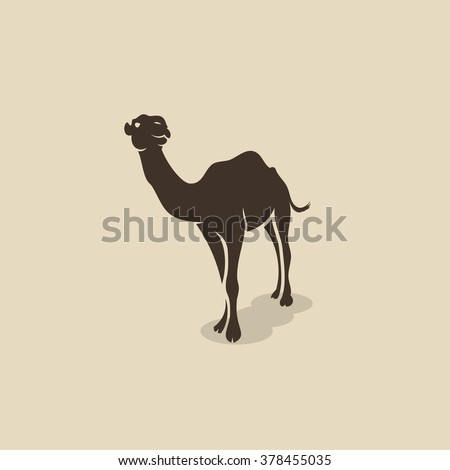 African camel - vector illustration  - stock vector