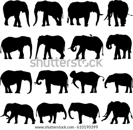 african elephant silhouette contour