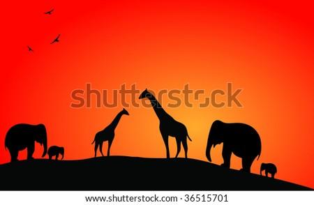 African Safari Sunset - stock vector