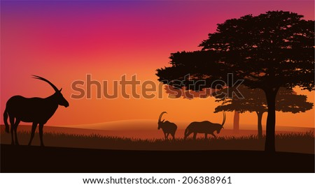 African savannah with grazing antelopes sunset landscape - wildlife scene vector - stock vector