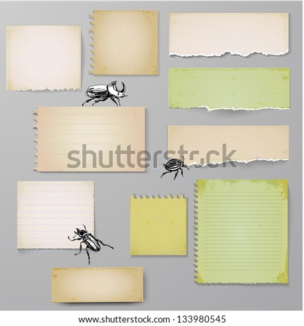Aged paper objects with bugs for your design. Vector illustration - stock vector