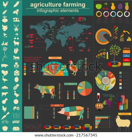 Agriculture infographics. Vector illustration - stock vector