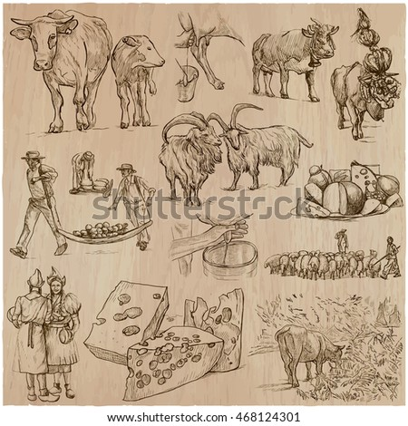AGRICULTURE, Life of a farmer. CHEESE-MAKING. Collection of an hand drawn vector illustrations. Set of freehand sketches. Line art technique. Each sketch comprise a few layers of outlines.