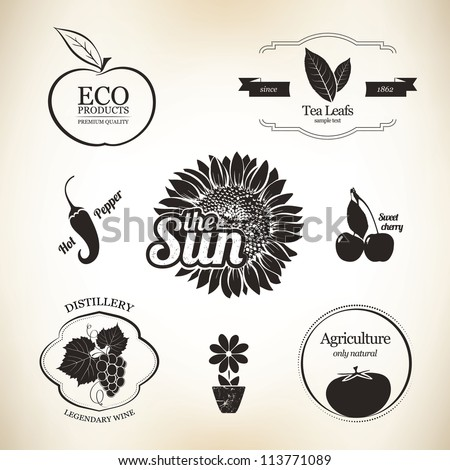 Agriculture, wine and food design elements - stock vector