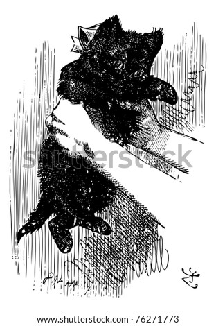 Alice Shakes the Red Kitten - Through the Looking Glass and what Alice Found There original book engraving. -- and it really was a kitten, after all. - stock vector
