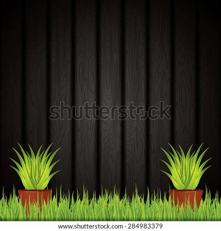Aloe Vera plant in pot.Vector - stock vector