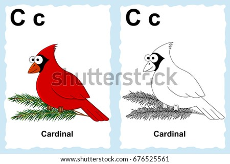 Alphabet Coloring Book Page With Outline Clip Art To Color Letter C Cardinal Bird