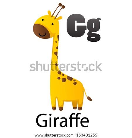 Alphabet G with Giraffe - stock vector