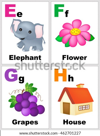 letter f flashcard alphabet printable flashcards collection letter e stock 505