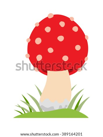 Amanita poisonous mushroom, isolated vector amanita on white background. Amanita mushroom, Amanita muscaria. Red amanita muscaria isolated on white background. - stock vector
