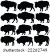 american bison silhouette collection - vector - stock vector