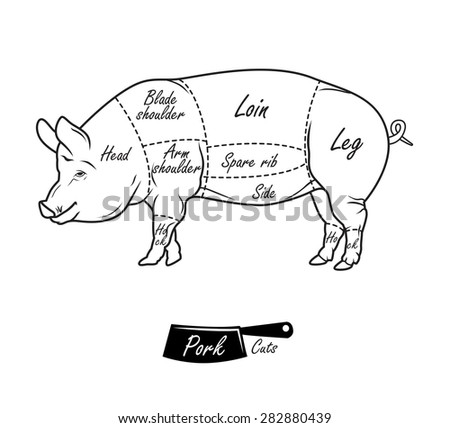 Meat Cuts Illustration furthermore ClarenceLarkinTheBookOfRevelation01 together with Search as well Butcher chart besides Labelled Images For Bones Of Cow. on cuts of lamb chart