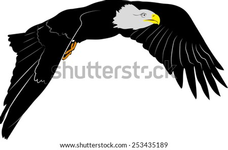American Eagle fly - stock vector