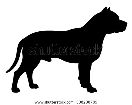 American Staffordshire Terrier purebred dog standing in side view - vector silhouette isolated - stock vector