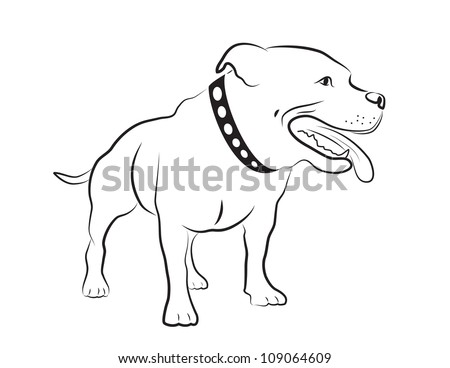 American Staffordshire Terrier Silhouette - stock vector