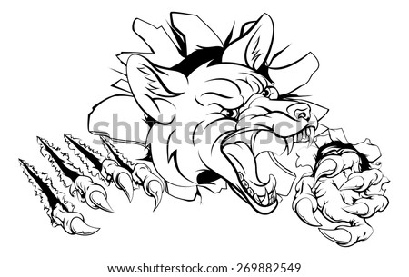 An illustration of a fox animal sports mascot cartoon character clawing through background - stock vector
