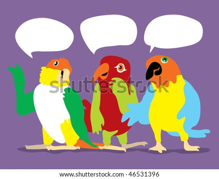 An illustration of three colorful parrots with talk bubbles