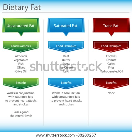 An image of a dietary fat chart. - stock vector