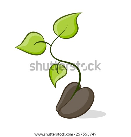 An image of a seed that is growing plant life. - stock vector