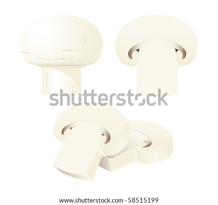An isolated vector whole mushroom, a half, and a stack of slices - stock vector