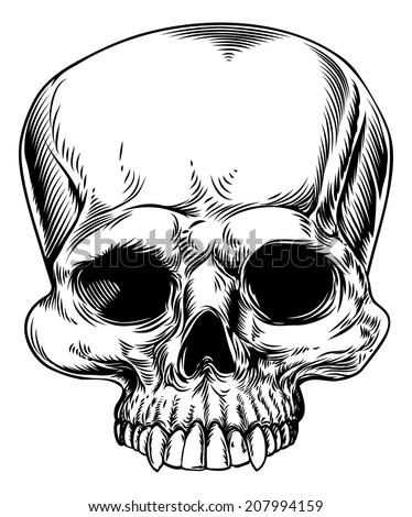 An original drawing of a human skull in a etched woodcut style - stock vector