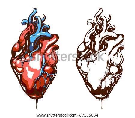 Anatomical heart isolated on white. Grunge stile. Vector EPS 10 illustration. - stock vector