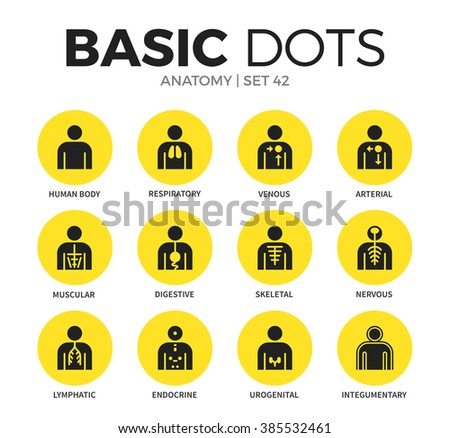 Anatomy flat icons set with humans body systems isolated vector illustration on white - stock vector