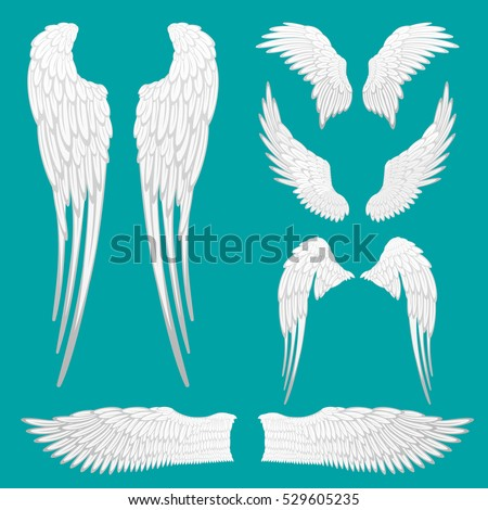 Angel white wings set isolated.