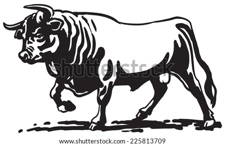angry bull - stock vector
