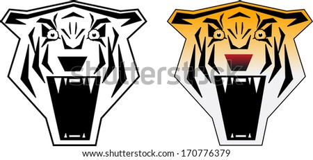 Angry tiger b&w and color vector illustration - stock vector