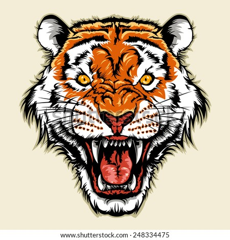 angry tiger head - stock vector