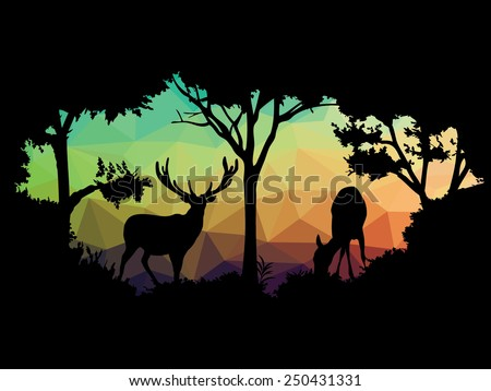 Wildlife Stock Photos of wildlife deer stock