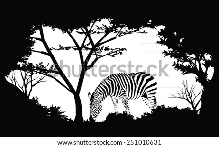 animal of wildlife (zebra) - stock vector