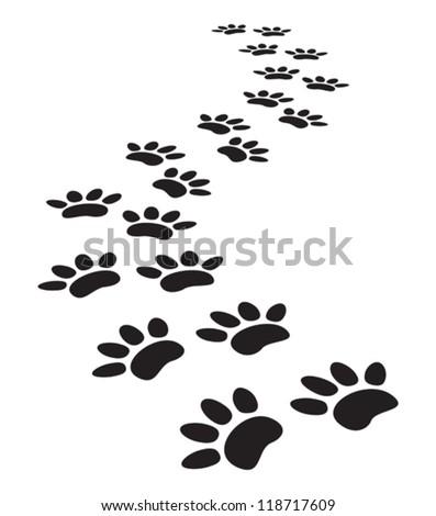 animal paw prints - stock vector